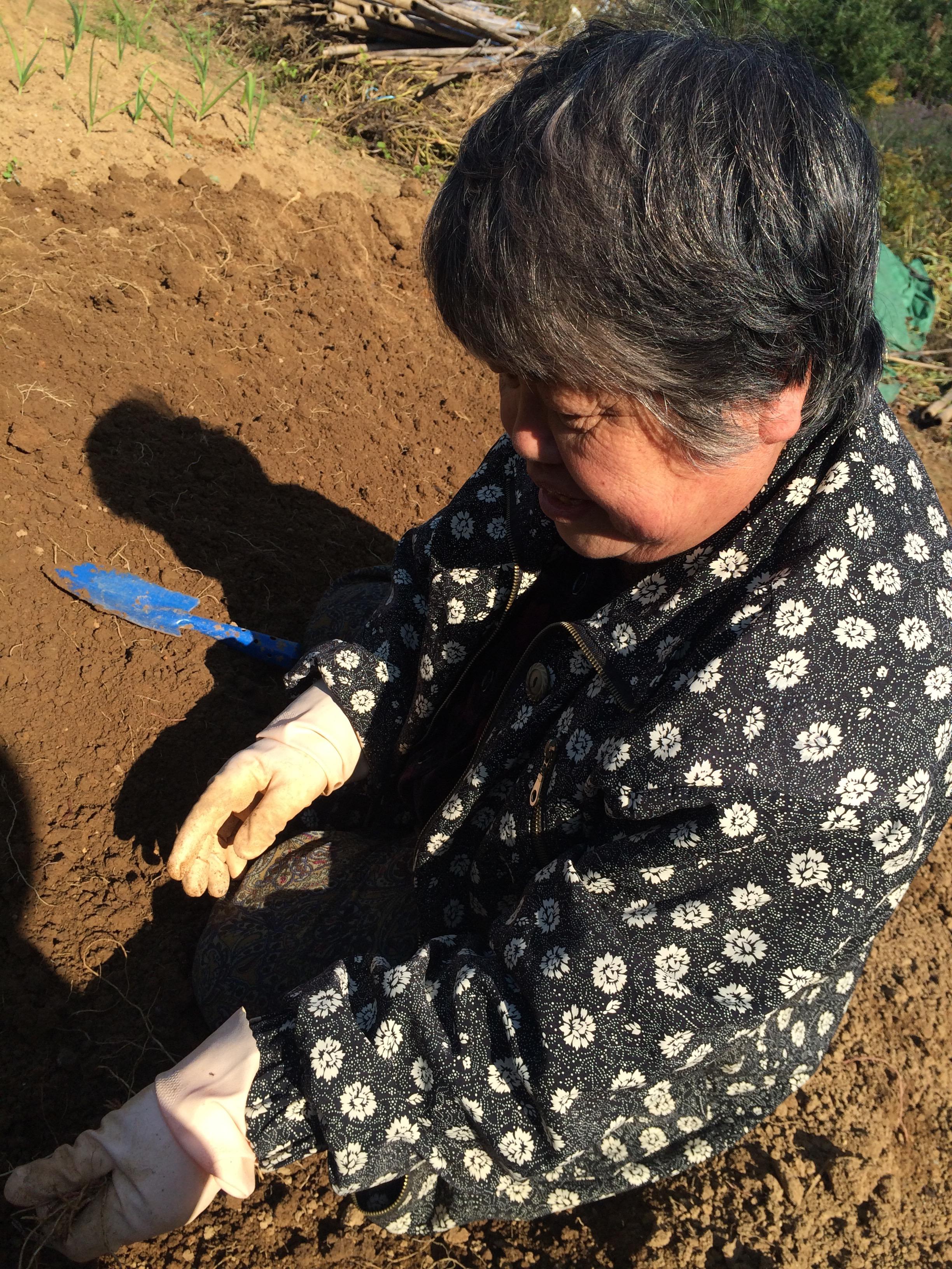 img 8160 1 - ぐうす畑(^.^)