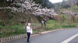 DSC 2264 2 300x169 - 桜が咲いたら……