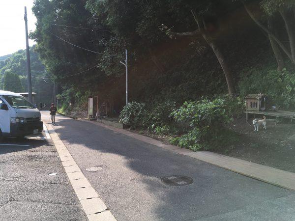 img 2851 - さくら館🌸朝の風景
