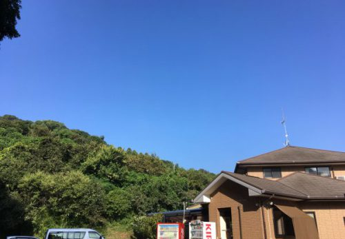 img 4137 500x347 - さくら館🌸朝の風景9/9