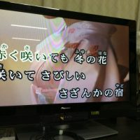 img 2033 1 200x200 - 秋桜見に来てます😊