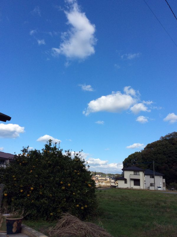 img 2348 - 😁よ〜歩く😁