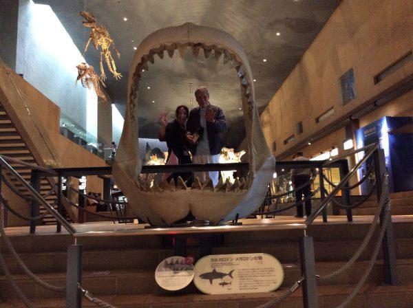 img 4733 - いのちのたび博物館に行きました。