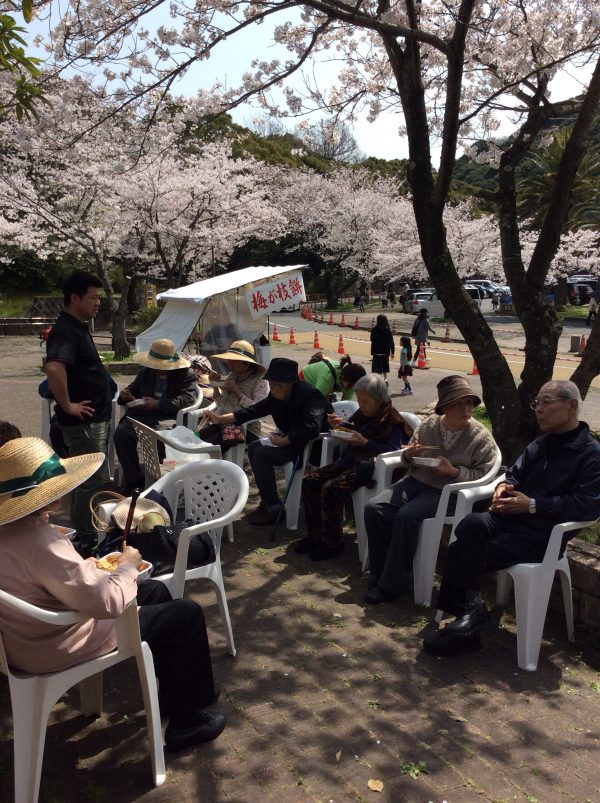 img 4826 - 桜🌸の花見ツアー1日