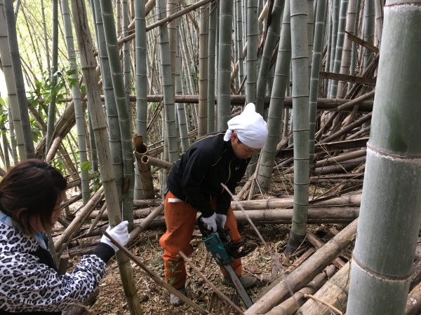 img 7306 - 竹の子掘り