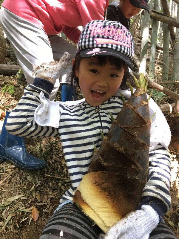 img 7313 - 竹の子掘り