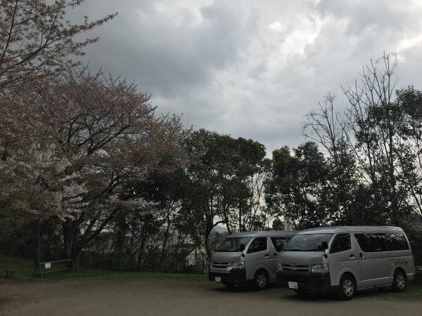 img 9427 - お花見🌸🌸🌸