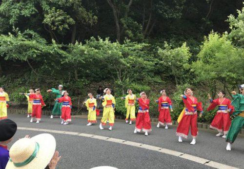 img 0103 500x347 - よさこい踊りがやってきた!!