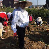 img 8162 200x200 - 芋掘り祭り🍠